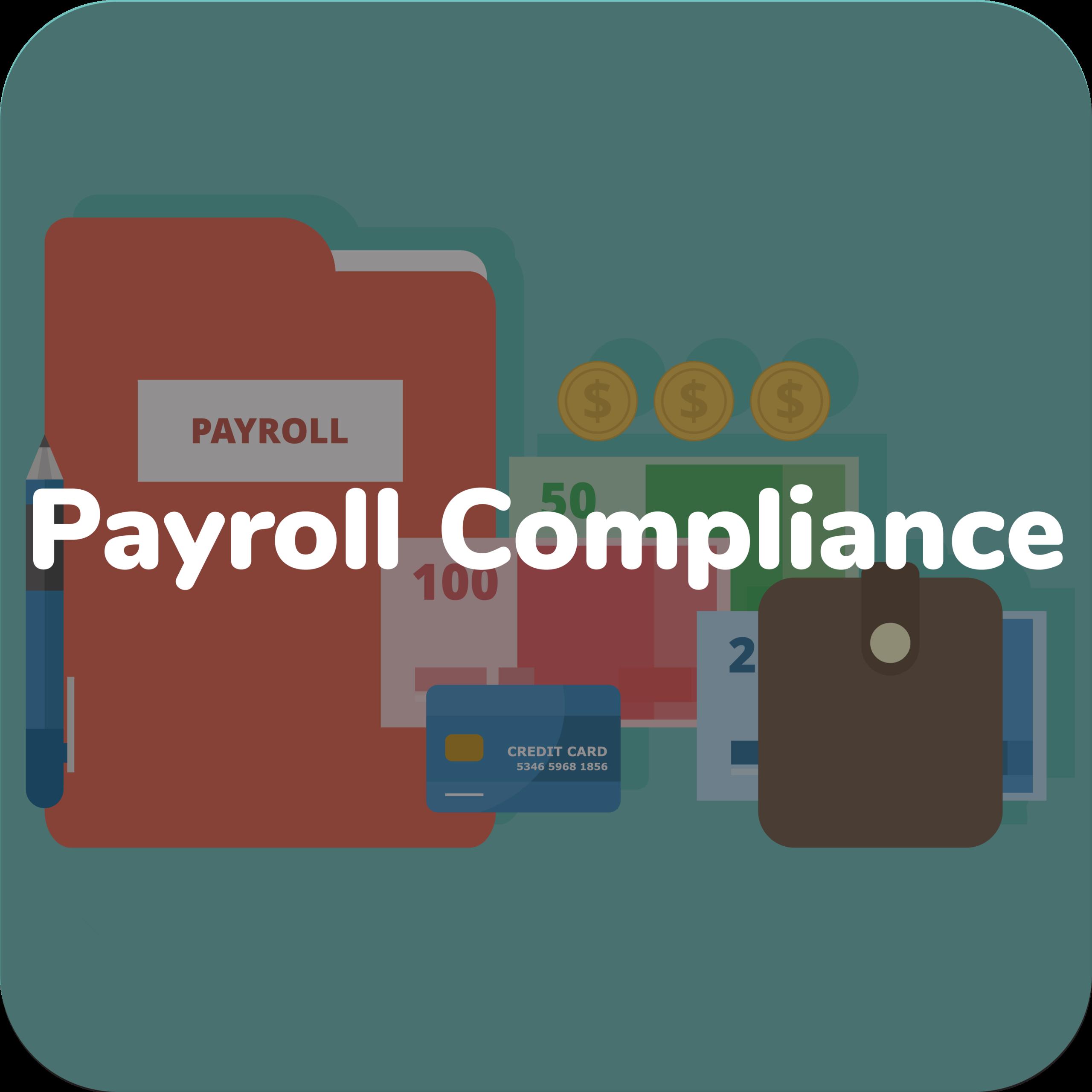 Payroll Audits